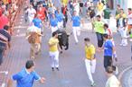 Los pastores orientan la manada hacia la plaza de toros.
