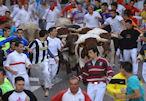 Los bueyes guían la manada rodeados de corredores.