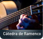 Imagen decorativa Cátedra de flamenco