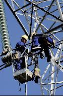 Unos operarios trabajan en una línea de alta tensión.
