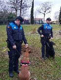 Los agentes responsables del entrenamiento de los perros de la futura unidad canina.
