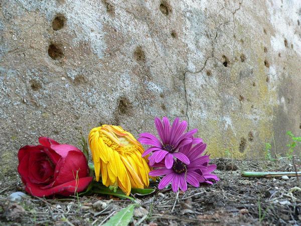 Un nuevo paso en el reconocimiento a los vecinos y vecinas víctimas de la represión franquista