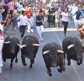 El encierro de Victoriano del Río, con 3.500 participantes, el más rápido de estas fiestas