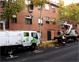 La poda del arbolado urbano se inicia el próximo 1 de noviembre