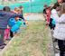 El CEIP Teresa de Calcuta, premio 'The Great Plant Hunt' por su proyecto sobre la  biodiversidad